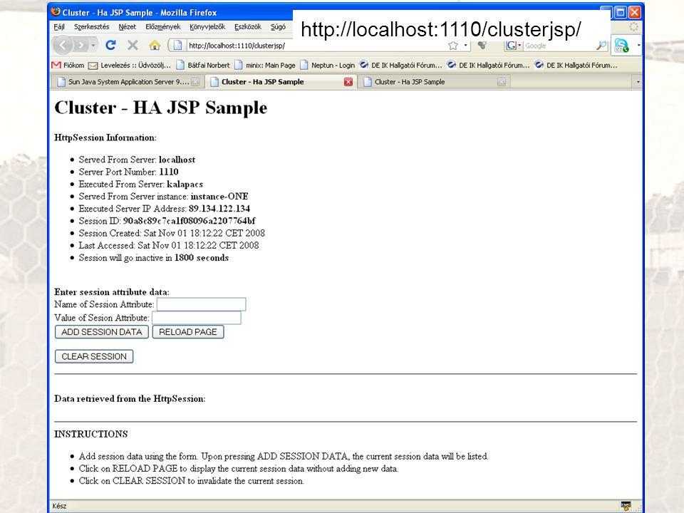 http://localhost:1110/clusterjsp/