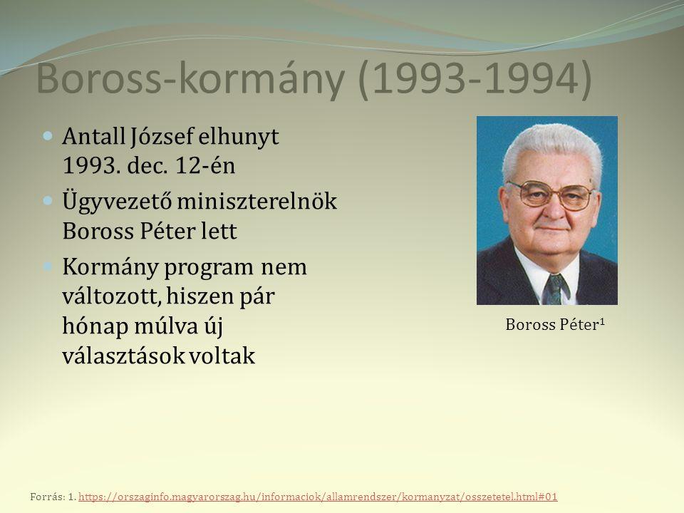 """Horn-kormány (1994-1998) """" A választások eredményeként ugyanaz a hat párt alakíthatott parlamenti frakciót, mint 1990-ben."""