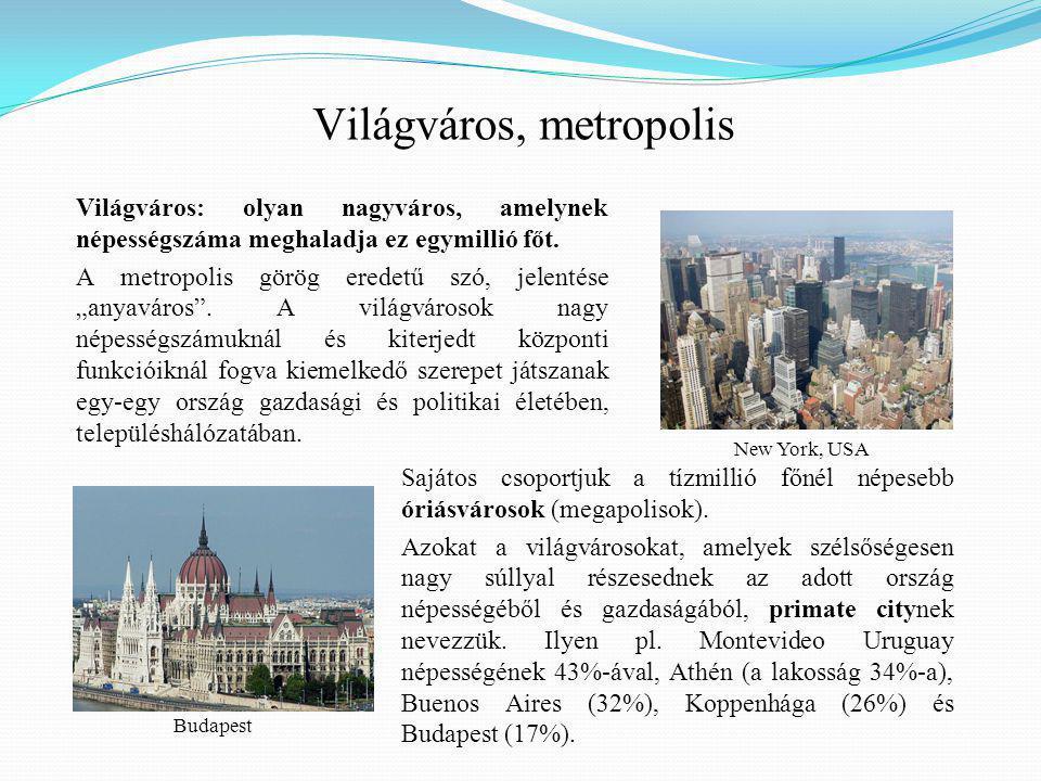 Sajátos csoportjuk a tízmillió főnél népesebb óriásvárosok (megapolisok).