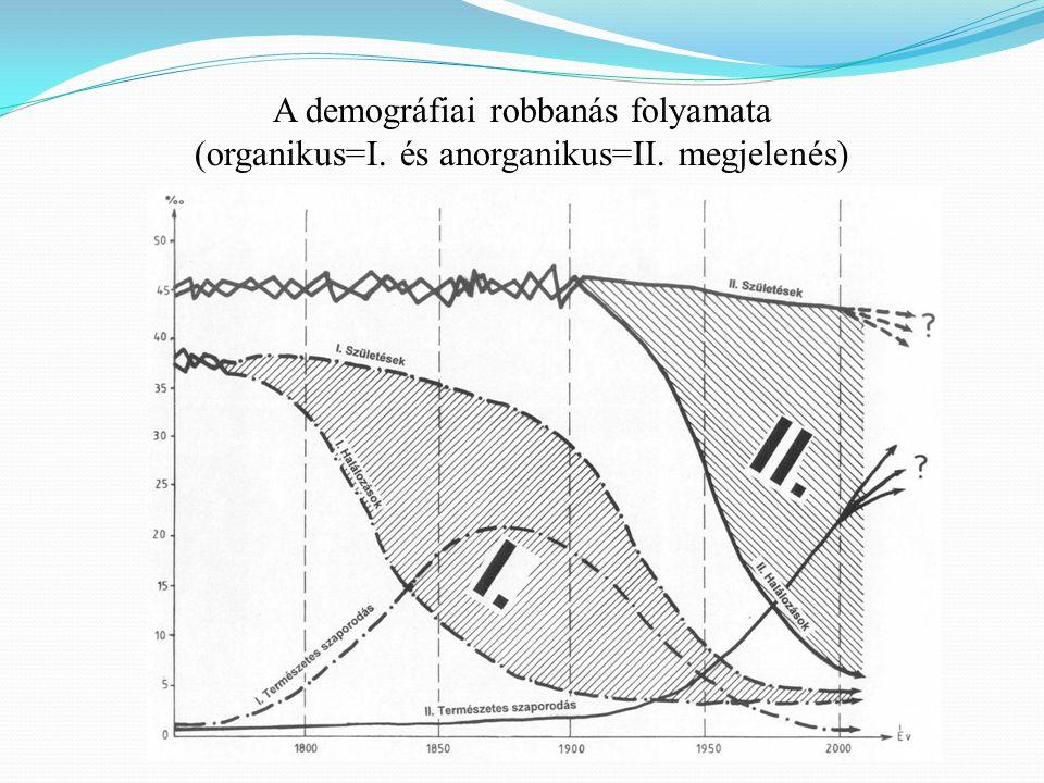 A demográfiai robbanás folyamata (organikus=I. és anorganikus=II. megjelenés)