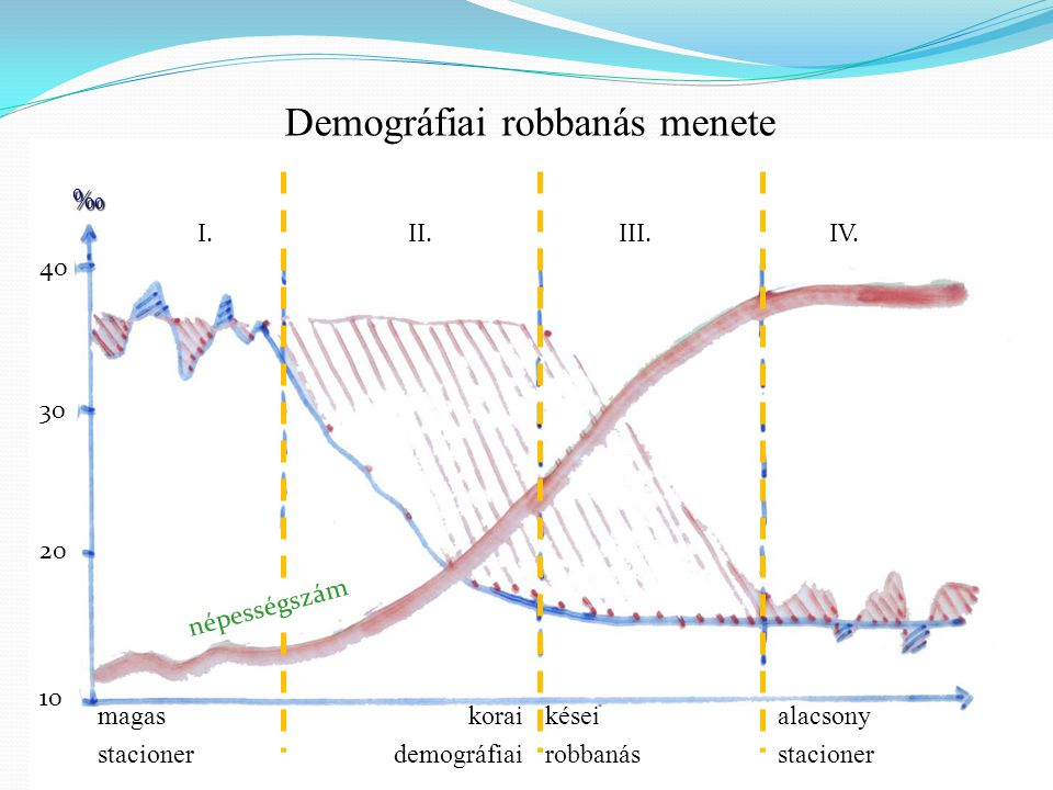Demográfiai robbanás menete I.II.III.IV. ‰ 40302010 magas stacioner korai demográfiai kései robbanás alacsony stacioner népességszám