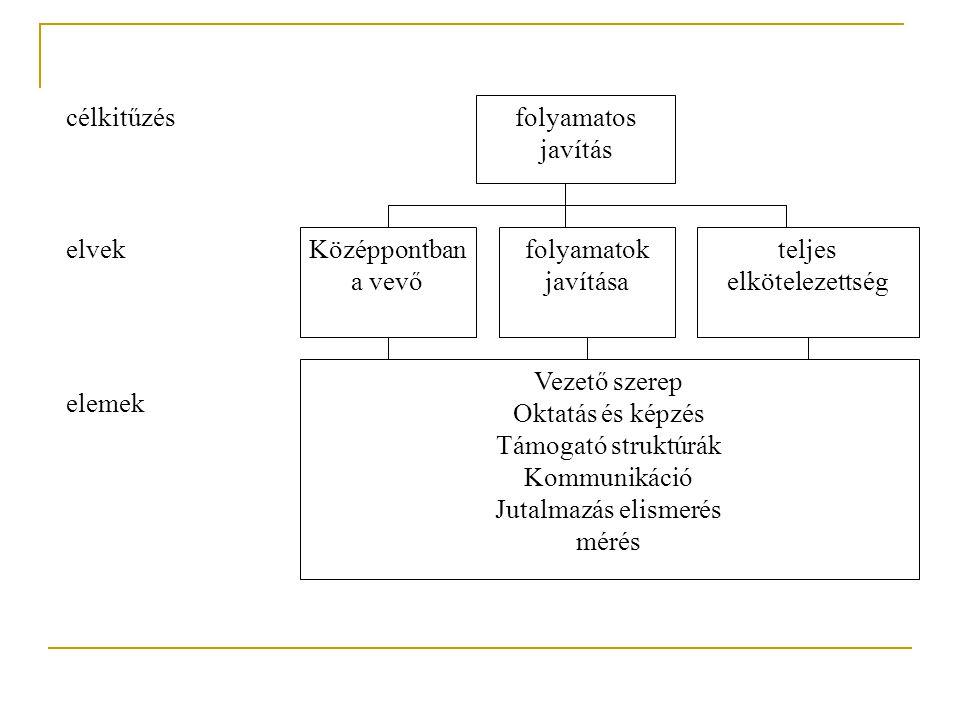 4.1 Általános követelmények Minőségirányítási rendszer bevezetése, dokumentálás, fenntartása és fejlesztése Folyamatok felismerése, sorrend és kölcsönhatások Folyamatok hatékony végrehajtása Folyamatok mérése, felügyelete, elemzése Ha egy folyamat alvállalkozásban valósul meg, meg kell határozni a szükséges kontrollt