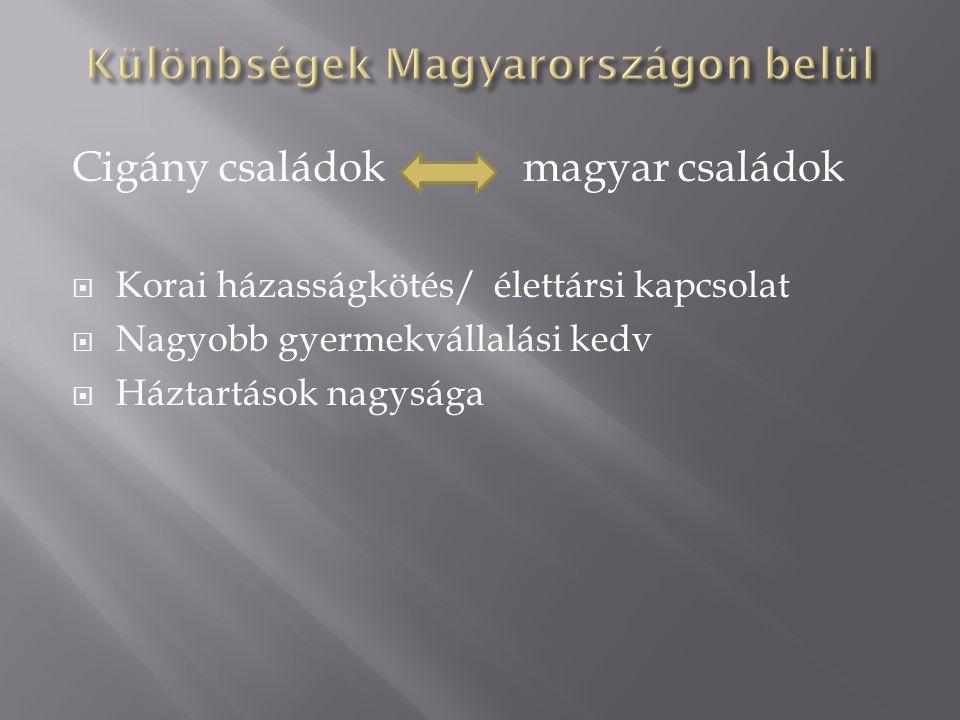 Cigány családok magyar családok  Korai házasságkötés/ élettársi kapcsolat  Nagyobb gyermekvállalási kedv  Háztartások nagysága