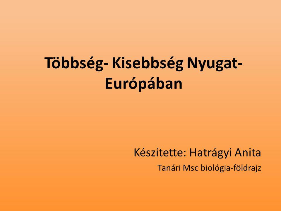 Többség- Kisebbség Nyugat- Európában Készítette: Hatrágyi Anita Tanári Msc biológia-földrajz