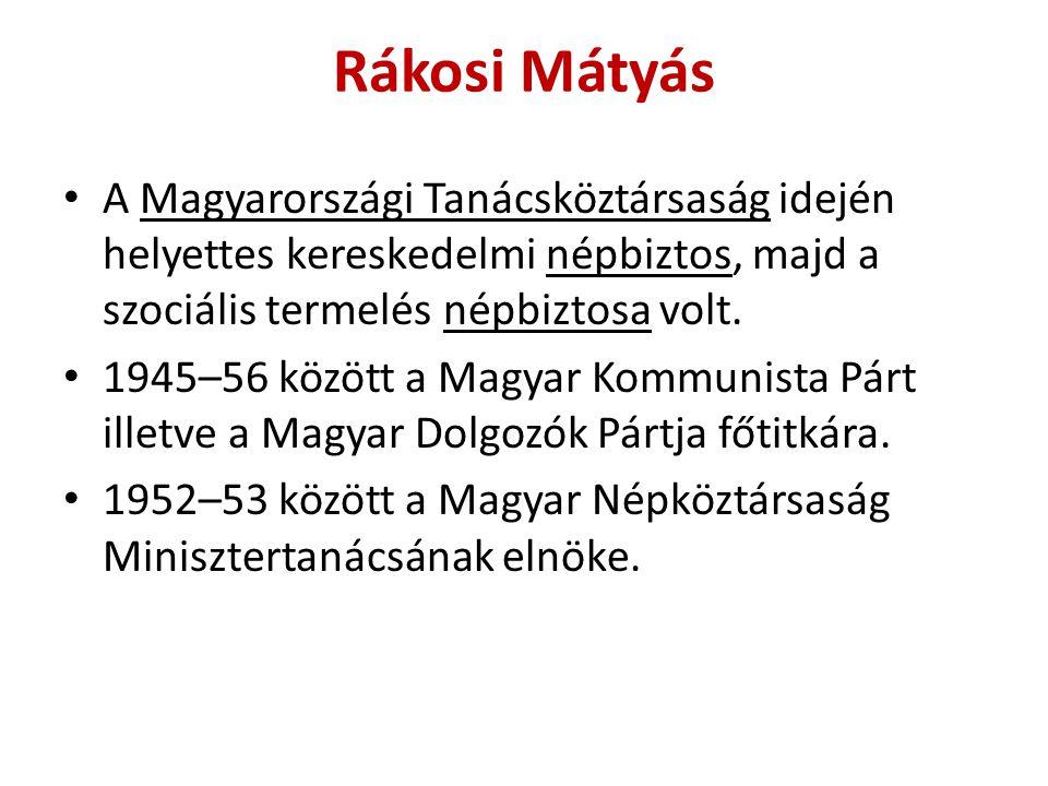 A Magyarországi Tanácsköztársaság idején helyettes kereskedelmi népbiztos, majd a szociális termelés népbiztosa volt. 1945–56 között a Magyar Kommunis