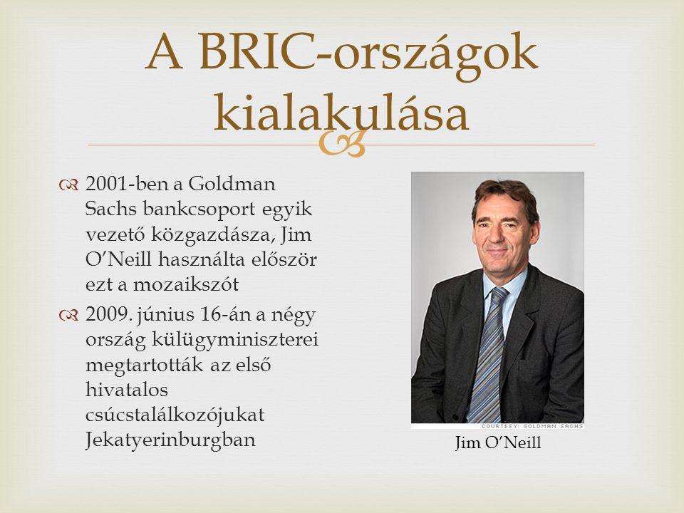  A BRIC-országok kialakulása  2001-ben a Goldman Sachs bankcsoport egyik vezető közgazdásza, Jim O'Neill használta először ezt a mozaikszót  2009.