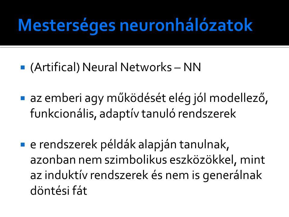  (Artifical) Neural Networks – NN  az emberi agy működését elég jól modellező, funkcionális, adaptív tanuló rendszerek  e rendszerek példák alapján