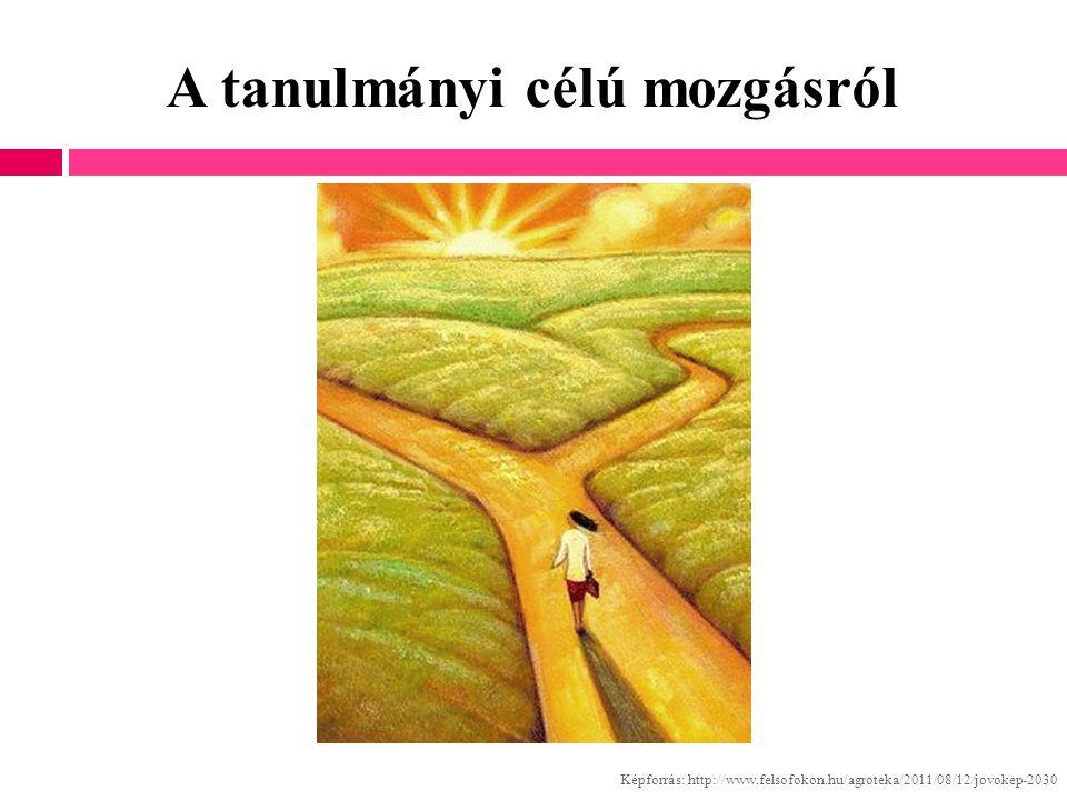 A tanulmányi célú mozgásról Képforrás: http://www.felsofokon.hu/agroteka/2011/08/12/jovokep-2030