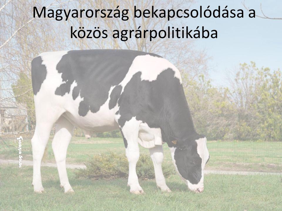 Magyarország bekapcsolódása a közös agrárpolitikába