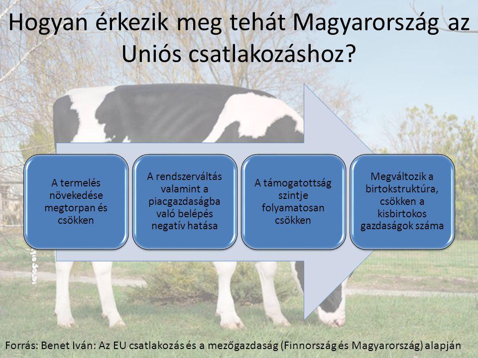 Hogyan érkezik meg tehát Magyarország az Uniós csatlakozáshoz.