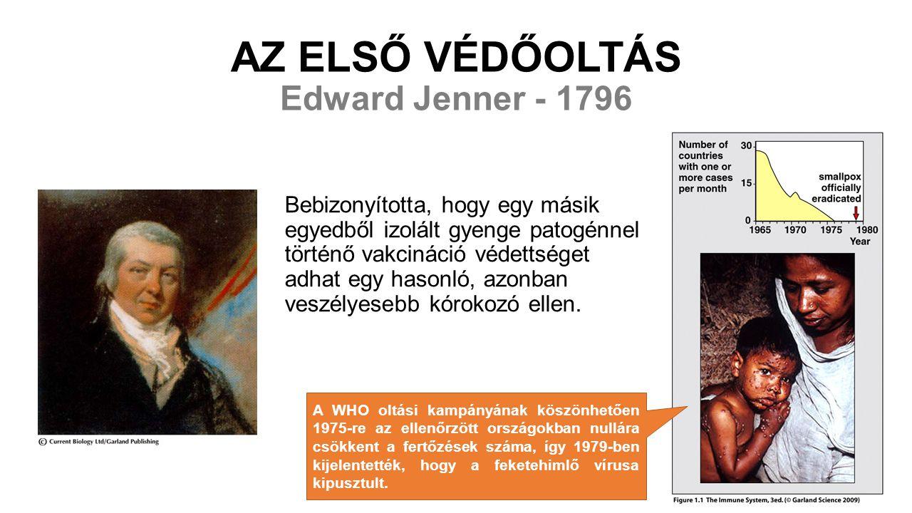 AZ ELSŐ VÉDŐOLTÁS Edward Jenner - 1796 Bebizonyította, hogy egy másik egyedből izolált gyenge patogénnel történő vakcináció védettséget adhat egy hasonló, azonban veszélyesebb kórokozó ellen.