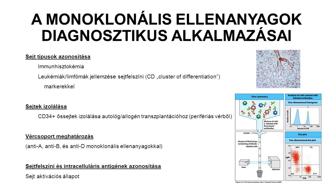 """A MONOKLONÁLIS ELLENANYAGOK DIAGNOSZTIKUS ALKALMAZÁSAI Sejt típusok azonosítása Immunhisztokémia Leukémiák/limfómák jellemzése sejtfelszíni (CD """"cluster of differentiation ) markerekkel Sejtek izolálása CD34+ őssejtek izolálása autológ/allogén transzplantációhoz (perifériás vérből) Vércsoport meghatározás (anti-A, anti-B, és anti-D monoklonális ellenanyagokkal) Sejtfelszíni és intracelluláris antigének azonosítása Sejt aktivációs állapot"""
