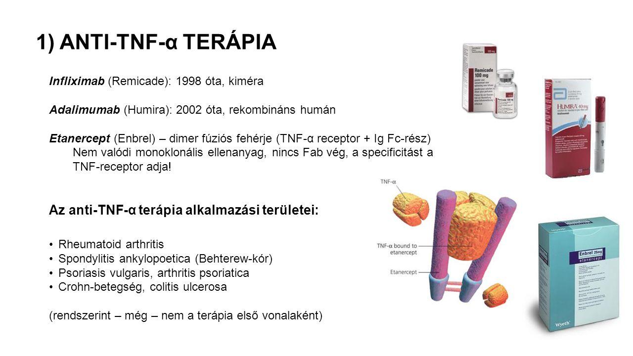 Infliximab (Remicade): 1998 óta, kiméra Adalimumab (Humira): 2002 óta, rekombináns humán Etanercept (Enbrel) – dimer fúziós fehérje (TNF-α receptor + Ig Fc-rész) Nem valódi monoklonális ellenanyag, nincs Fab vég, a specificitást a TNF-receptor adja.