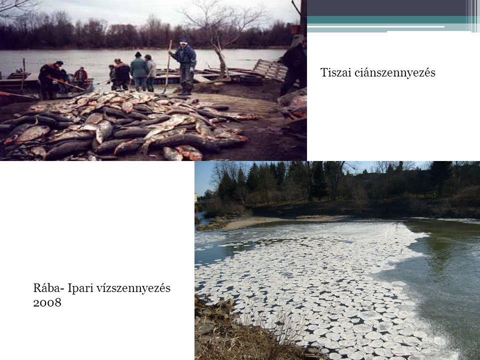 Rába- Ipari vízszennyezés 2008 Tiszai ciánszennyezés