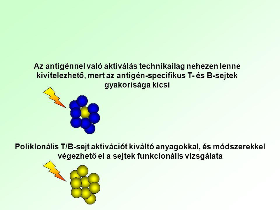 A T és B limfociták funkcionális aktivitásának mérése nem antigén-specifikus A TCR vagy a BCR nem antigén-specifikus aktivációjával - lectinek-indukálta aktiváció - α-IgM, α-CD3 vagy α-TCR ellenanyaggal, allogén T-sejt aktiváció (korai aktiváció: intracelluláris események vizsgálata) aktivációs markerek (IL2R, integrinek) ellenanyag és/vagy citokin termelés (ELISA, bioassay) proliferatív válasz 3 H-timidin beépülése CFSE fluoreszcencia feleződés sejtciklus vizsgálata 3.