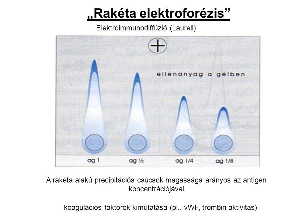 """""""Rakéta elektroforézis"""" Elektroimmunodiffúzió (Laurell) koagulációs faktorok kimutatása (pl., vWF, trombin aktivitás) A rakéta alakú precipitációs csú"""