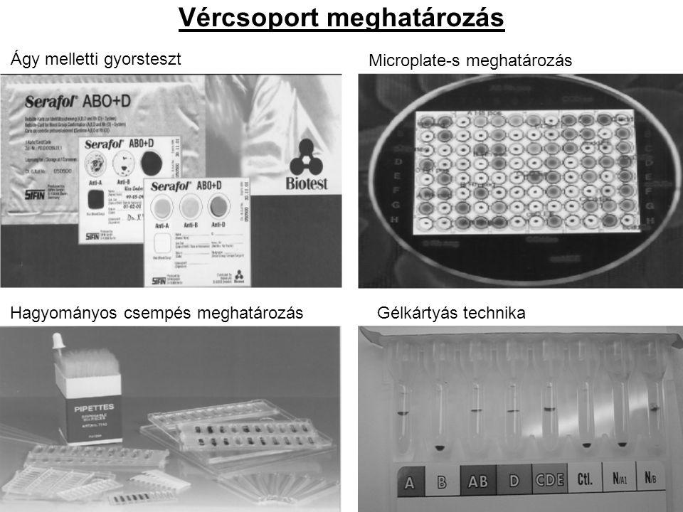 Vércsoport meghatározás Ágy melletti gyorsteszt Hagyományos csempés meghatározás Microplate-s meghatározás Gélkártyás technika