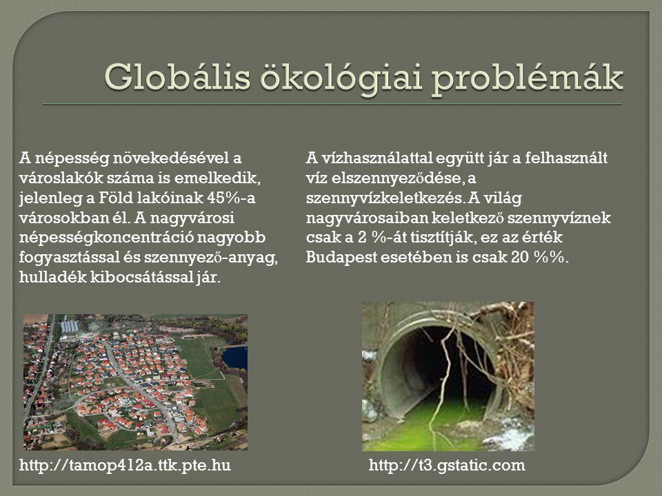 http://tamop412a.ttk.pte.hu A népesség növekedésével a városlakók száma is emelkedik, jelenleg a Föld lakóinak 45%-a városokban él.