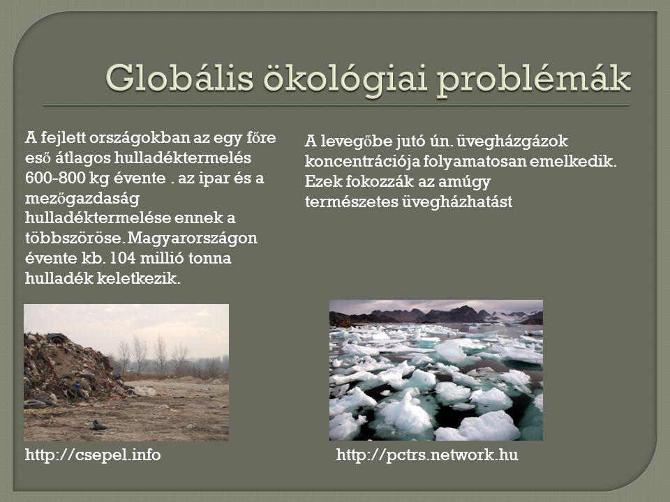 A fejlett országokban az egy f ő re es ő átlagos hulladéktermelés 600-800 kg évente.