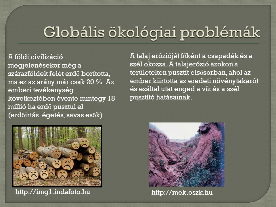 http://img1.indafoto.hu A földi civilizáció megjelenésekor még a szárazföldek felét erd ő borította, ma ez az arány már csak 20 %.