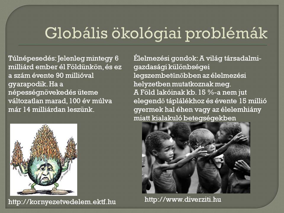 http://kornyezetvedelem.ektf.hu Túlnépesedés: Jelenleg mintegy 6 milliárd ember él Földünkön, és ez a szám évente 90 millióval gyarapodik.