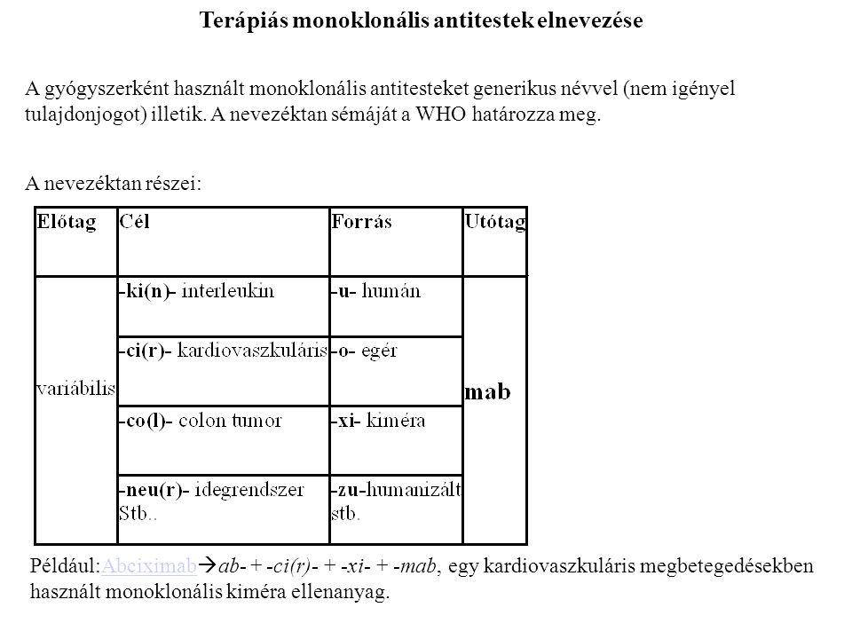 Terápiás monoklonális antitestek elnevezése A gyógyszerként használt monoklonális antitesteket generikus névvel (nem igényel tulajdonjogot) illetik.