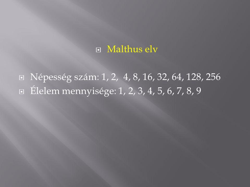  Malthus elv  Népesség szám: 1, 2, 4, 8, 16, 32, 64, 128, 256  Élelem mennyisége: 1, 2, 3, 4, 5, 6, 7, 8, 9