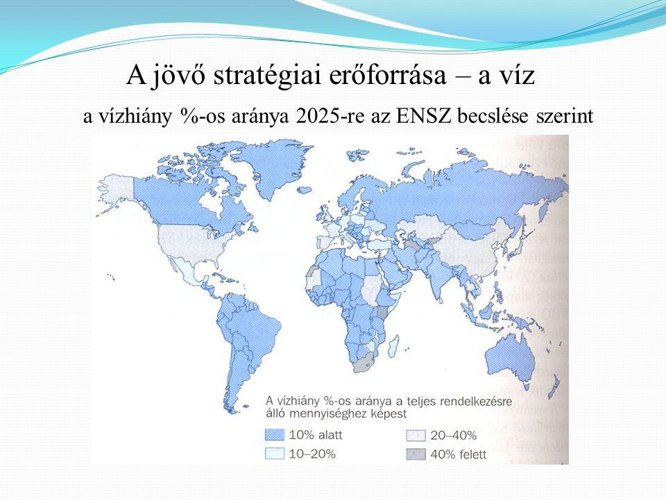 A jövő stratégiai erőforrása – a víz a vízhiány %-os aránya 2025-re az ENSZ becslése szerint