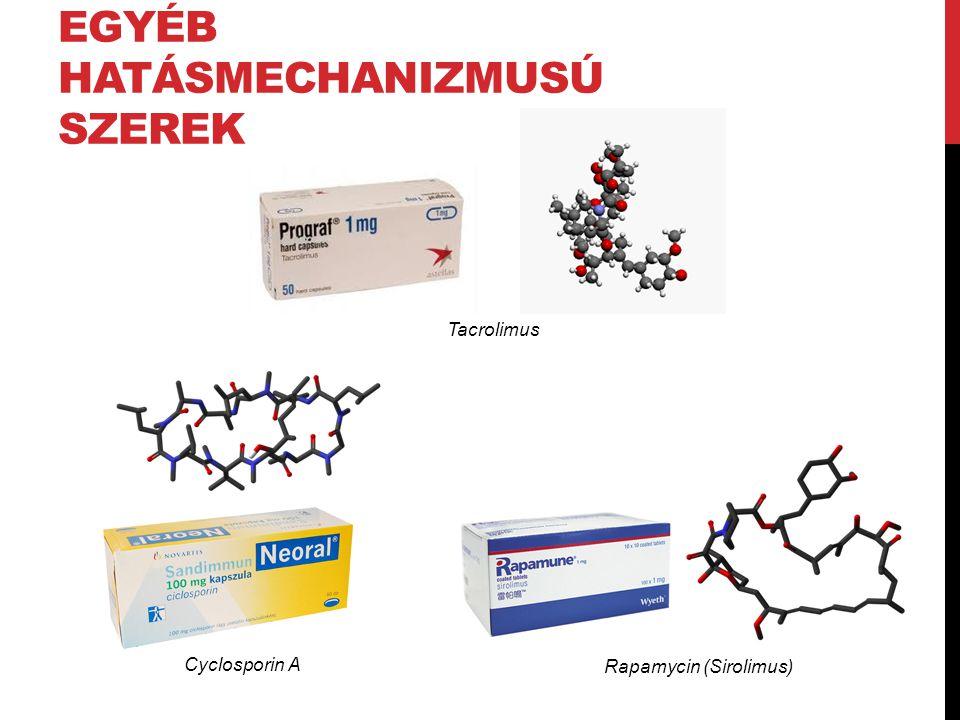 Tacrolimus Rapamycin (Sirolimus) Cyclosporin A EGYÉB HATÁSMECHANIZMUSÚ SZEREK