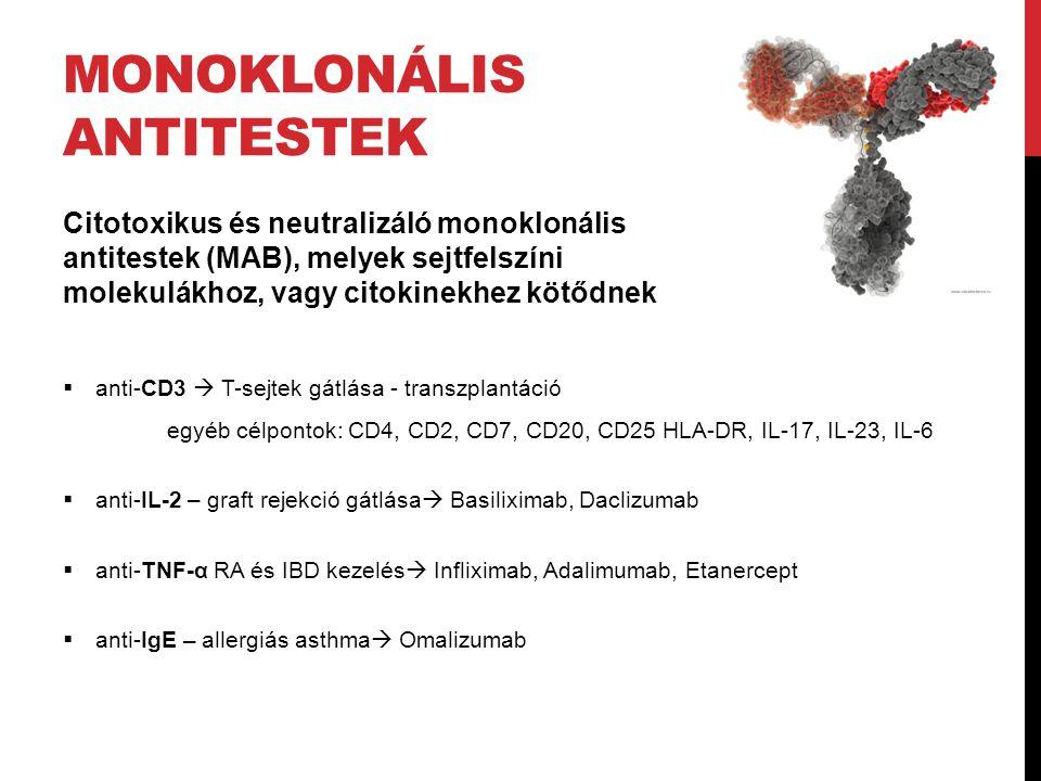 MONOKLONÁLIS ANTITESTEK Citotoxikus és neutralizáló monoklonális antitestek (MAB), melyek sejtfelszíni molekulákhoz, vagy citokinekhez kötődnek  anti-CD3  T-sejtek gátlása - transzplantáció egyéb célpontok: CD4, CD2, CD7, CD20, CD25 HLA-DR, IL-17, IL-23, IL-6  anti-IL-2 – graft rejekció gátlása  Basiliximab, Daclizumab  anti-TNF-α RA és IBD kezelés  Infliximab, Adalimumab, Etanercept  anti-IgE – allergiás asthma  Omalizumab