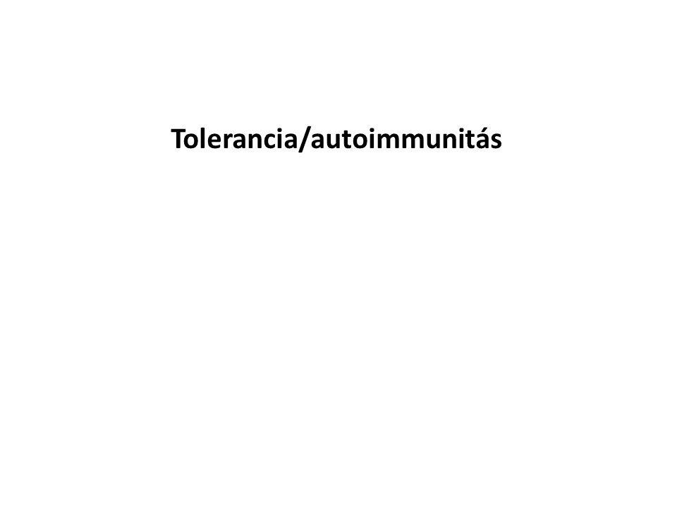 Centrális/Perifériás tolerancia