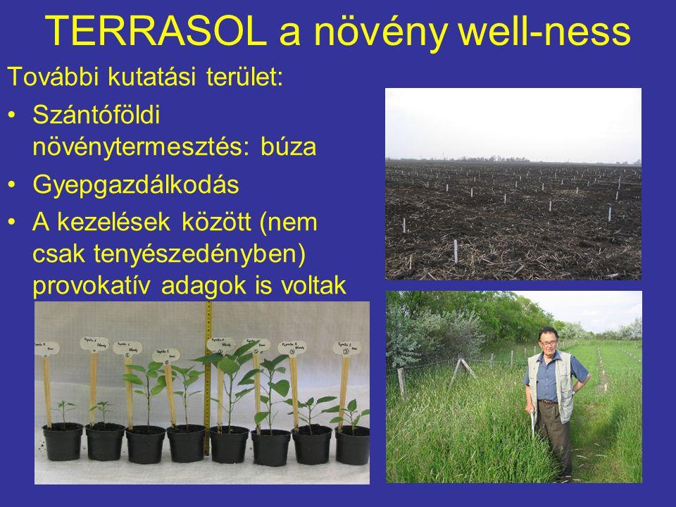 TERRASOL a növény well-ness További kutatási terület: Szántóföldi növénytermesztés: búza Gyepgazdálkodás A kezelések között (nem csak tenyészedényben)
