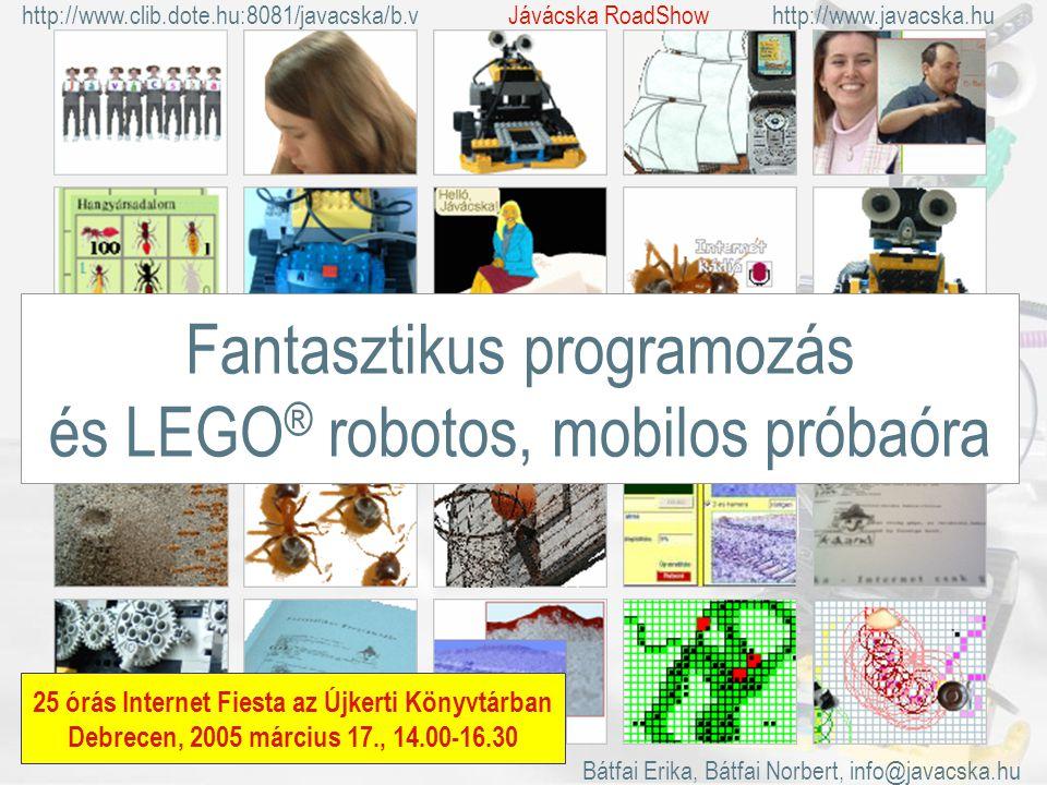 Fantasztikus programozás és LEGO ® robotos, mobilos próbaóra 25 órás Internet Fiesta az Újkerti Könyvtárban Debrecen, 2005 március 17., 14.00-16.30 Bátfai Erika, Bátfai Norbert, info@javacska.hu http://www.clib.dote.hu:8081/javacska/b.vhttp://www.javacska.huJávácska RoadShow