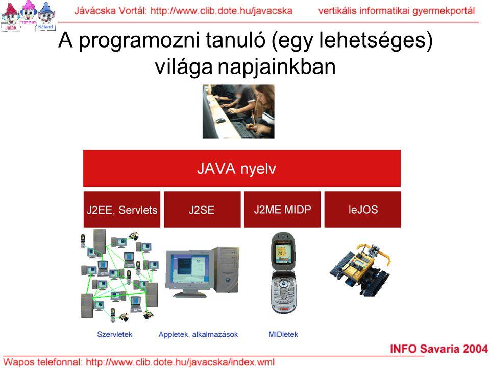 """A Jávácska Platform , bekapcsolódás: játékkal Jávácska Platform = a napjainkra általunk javasolt programozás """"oktatási platform"""