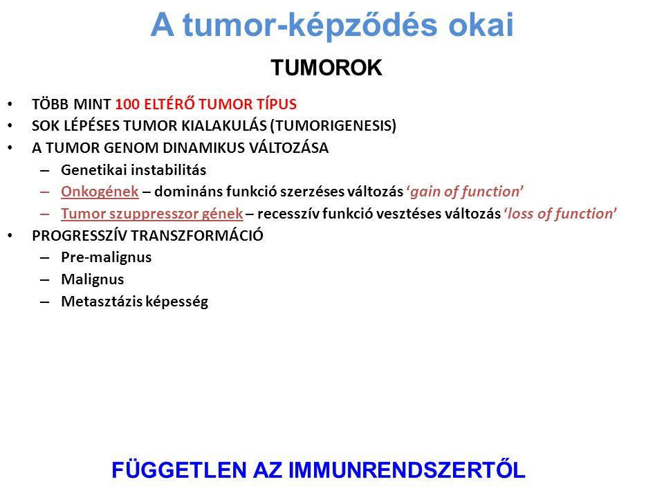 TÖBB MINT 100 ELTÉRŐ TUMOR TÍPUS SOK LÉPÉSES TUMOR KIALAKULÁS (TUMORIGENESIS) A TUMOR GENOM DINAMIKUS VÁLTOZÁSA – Genetikai instabilitás – Onkogének –