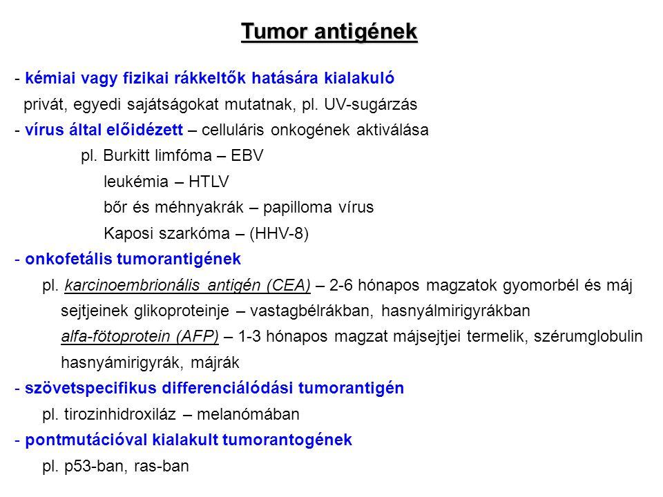Tumor antigének - kémiai vagy fizikai rákkeltők hatására kialakuló privát, egyedi sajátságokat mutatnak, pl. UV-sugárzás - vírus által előidézett – ce