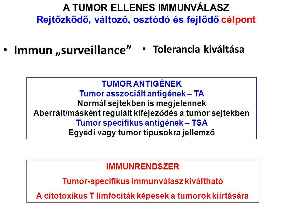 """A TUMOR ELLENES IMMUNVÁLASZ Rejtőzködő, változó, osztódó és fejlődő célpont Immun """"surveillance"""" Tolerancia kiváltása TUMOR ANTIGÉNEK Tumor asszociált"""