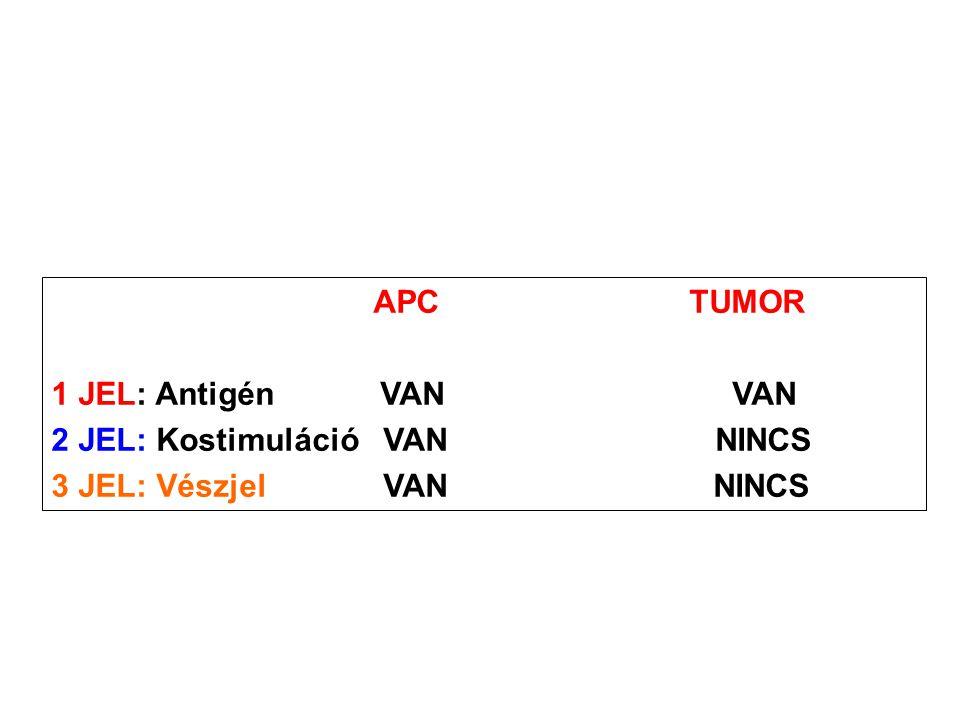 APC TUMOR 1 JEL: Antigén VAN VAN 2 JEL: Kostimuláció VAN NINCS 3 JEL: Vészjel VAN NINCS