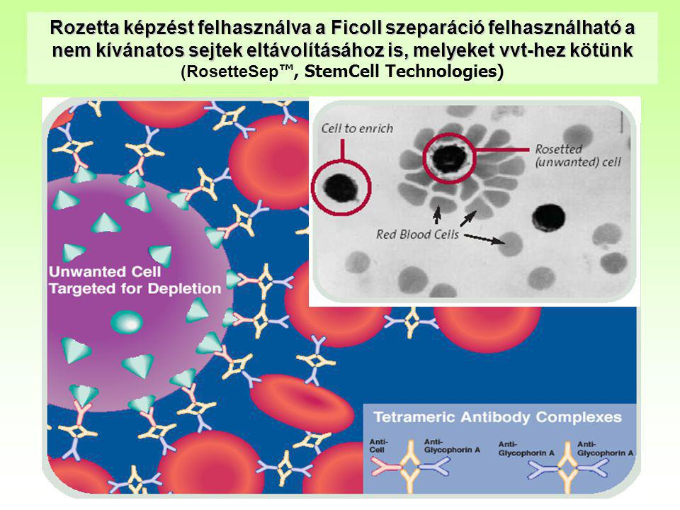 Rozetta képzést felhasználva a Ficoll szeparáció felhasználható a nem kívánatos sejtek eltávolításához is, melyeket vvt-hez kötünk (RosetteSep ™, Stem