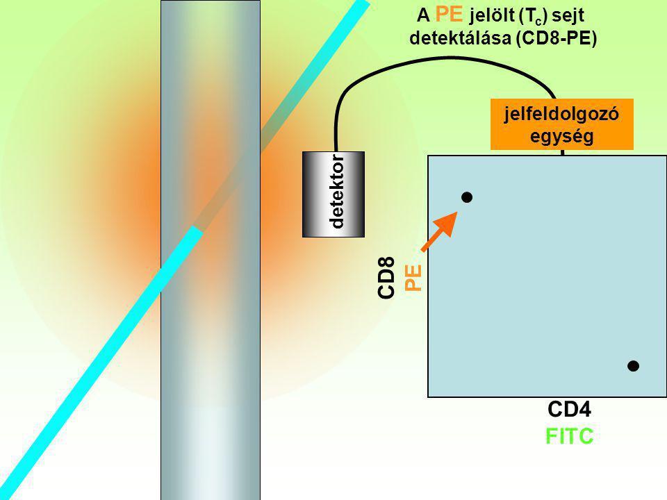 Tc detektor A PE jelölt (T c ) sejt detektálása (CD8-PE) CD8 PE CD4 FITC jelfeldolgozó egység