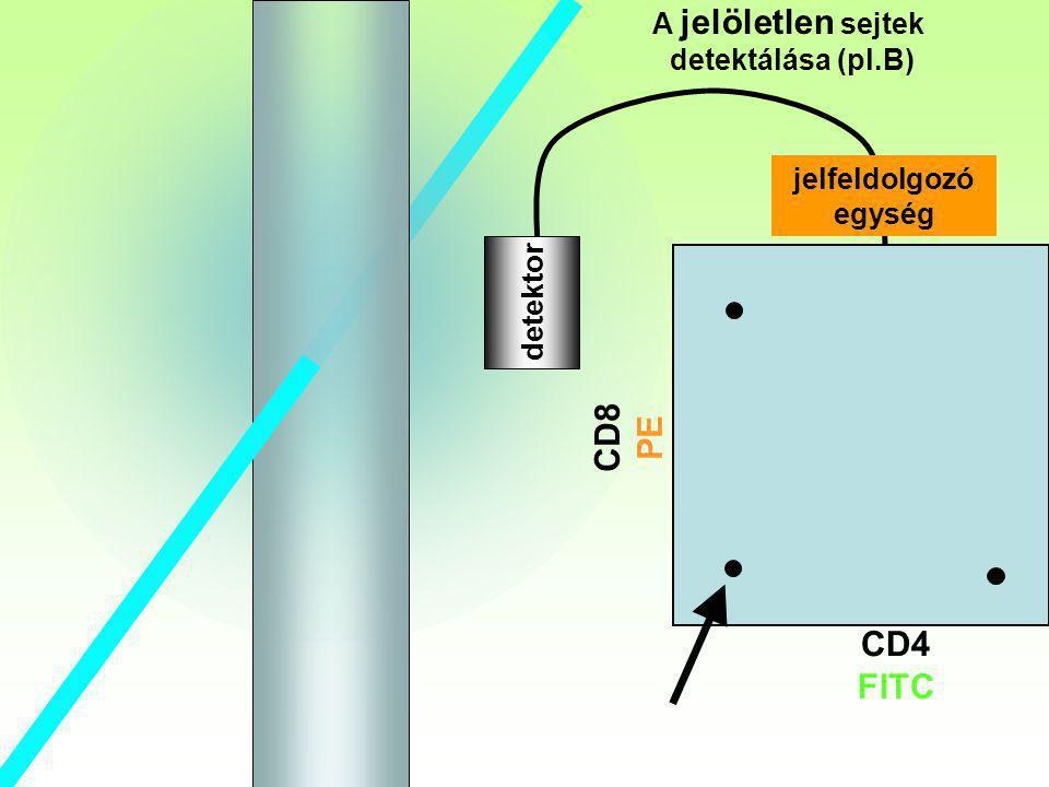 B detektor A jelöletlen sejtek detektálása (pl.B) CD8 PE CD4 FITC jelfeldolgozó egység