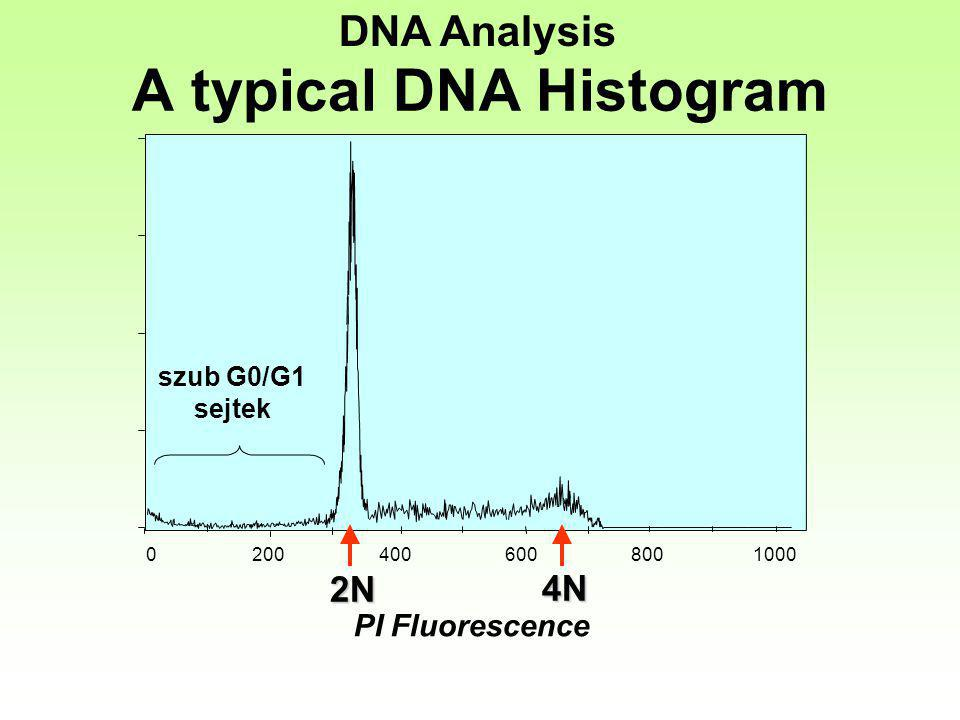 0 200 400 600 8001000 PI Fluorescence 2N 4N DNA Analysis szub G0/G1 sejtek A typical DNA Histogram