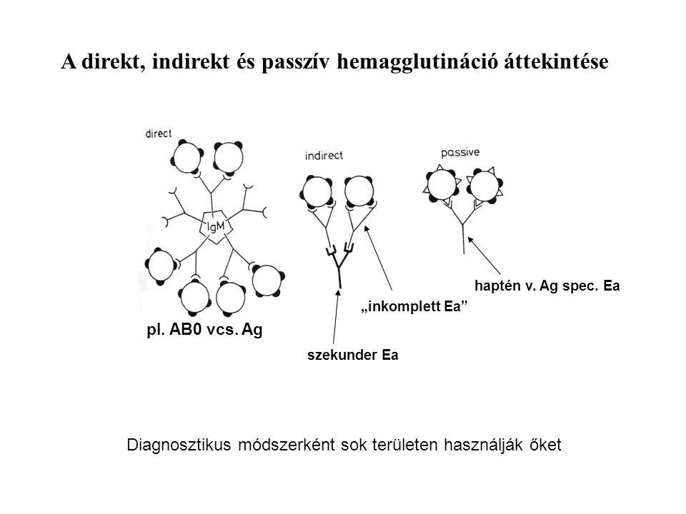 """Diagnosztikus módszerként sok területen használják őket pl. AB0 vcs. Ag """"inkomplett Ea"""" haptén v. Ag spec. Ea A direkt, indirekt és passzív hemaggluti"""
