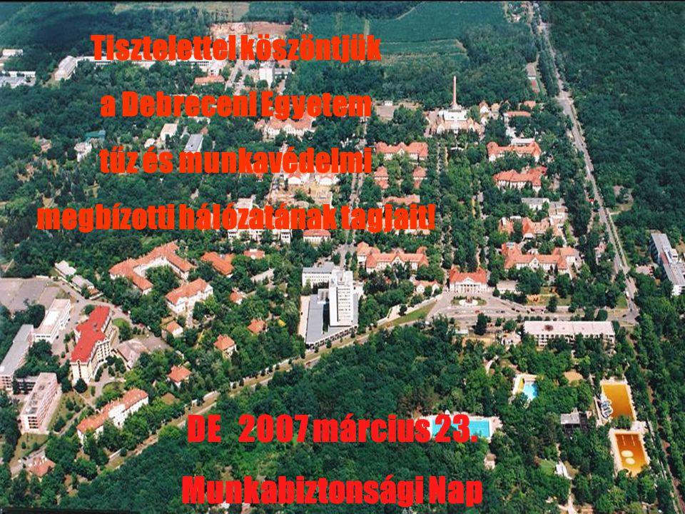 DE 2007 március 23. Munkabiztonsági Nap Tisztelettel köszöntjük a Debreceni Egyetem tűz és munkavédelmi megbízotti hálózatának tagjait!
