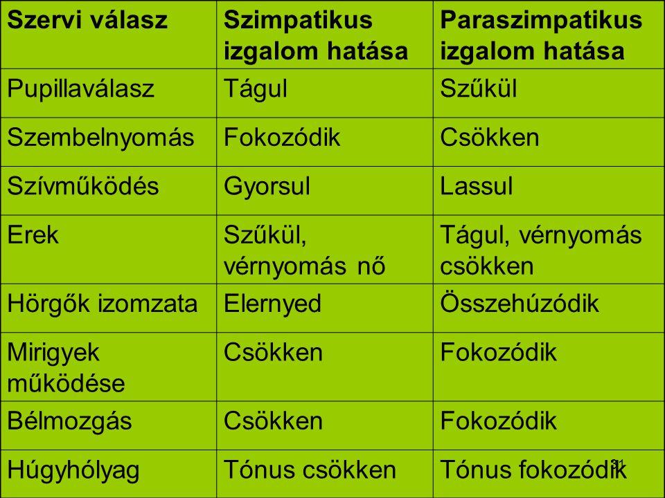 31 Szervi válaszSzimpatikus izgalom hatása Paraszimpatikus izgalom hatása PupillaválaszTágulSzűkül SzembelnyomásFokozódikCsökken SzívműködésGyorsulLas