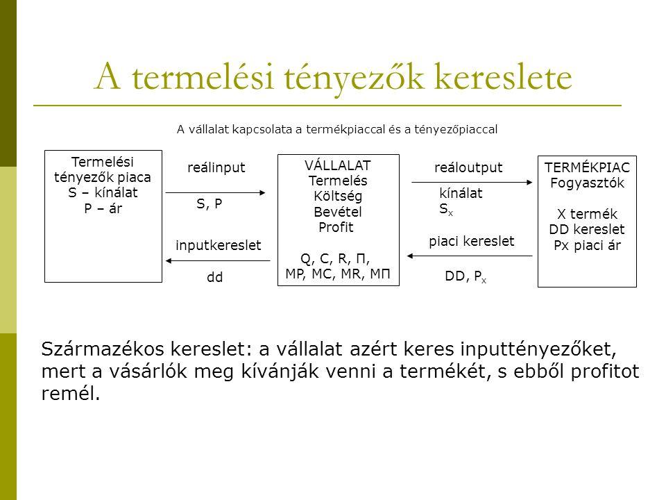 A termelési tényezők kereslete Termelési tényezők piaca S – kínálat P – ár VÁLLALAT Termelés Költség Bevétel Profit Q, C, R, Π, MP, MC, MR, MΠ TERMÉKPIAC Fogyasztók X termék DD kereslet Px piaci ár reálinput S, P inputkereslet dd reáloutput kínálat S x piaci kereslet DD, P x Származékos kereslet: a vállalat azért keres inputtényezőket, mert a vásárlók meg kívánják venni a termékét, s ebből profitot remél.