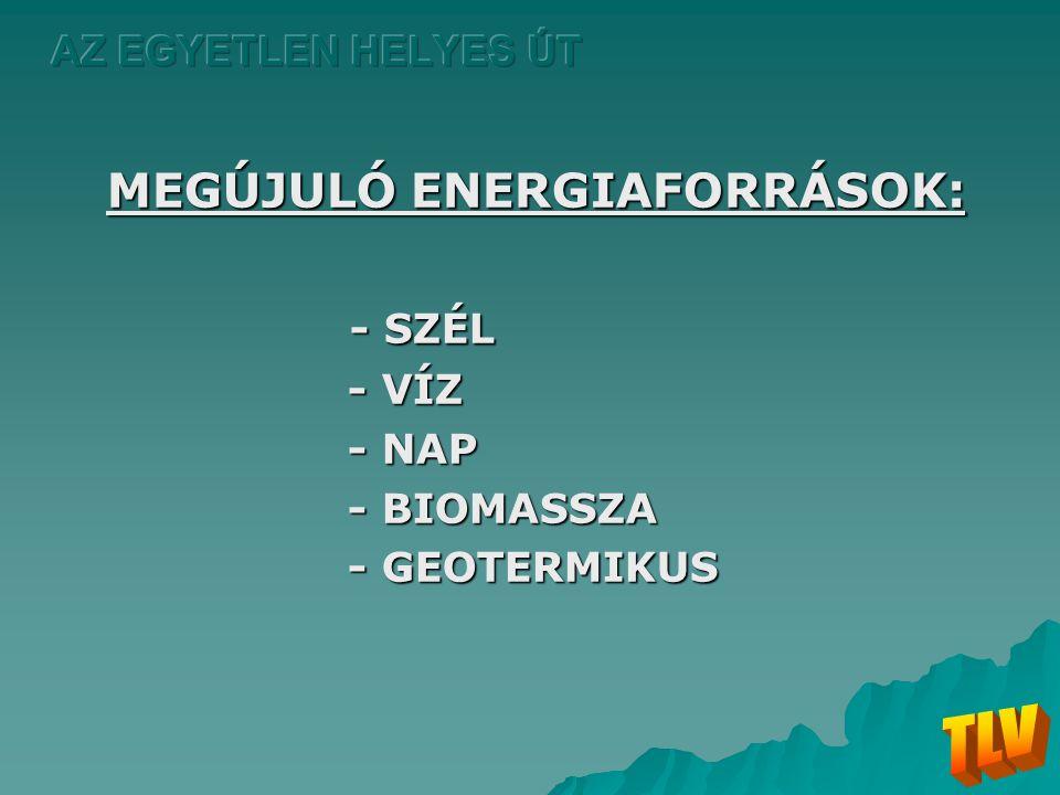 MEGÚJULÓ ENERGIAFORRÁSOK: - SZÉL - SZÉL - VÍZ - VÍZ - NAP - NAP - BIOMASSZA - BIOMASSZA - GEOTERMIKUS - GEOTERMIKUS
