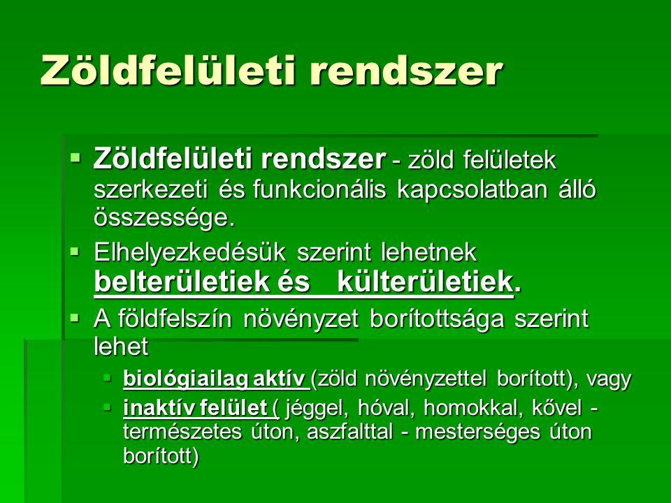 Zöldfelületi rendszer  Zöldfelületi rendszer - zöld felületek szerkezeti és funkcionális kapcsolatban álló összessége.  Elhelyezkedésük szerint lehe