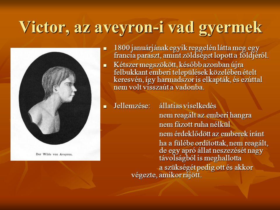 Victor, az aveyron-i vad gyermek 1800 januárjának egyik reggelén látta meg egy francia paraszt, amint zöldséget lopott a földjéről. 1800 januárjának e