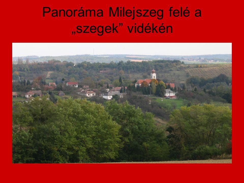 """Panoráma Milejszeg felé a """"szegek"""" vidékén"""